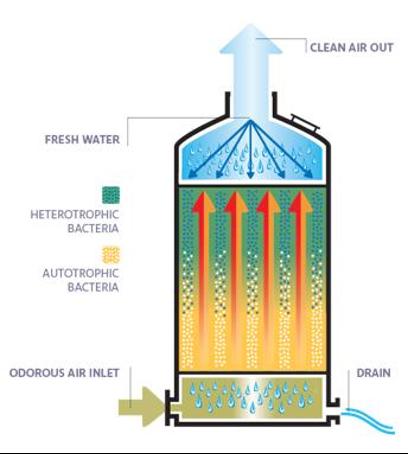 Scheme of the biotrickling process (1)