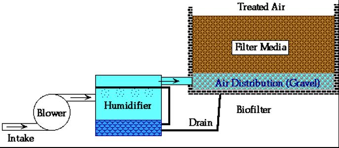 Scheme of a biofiltration system